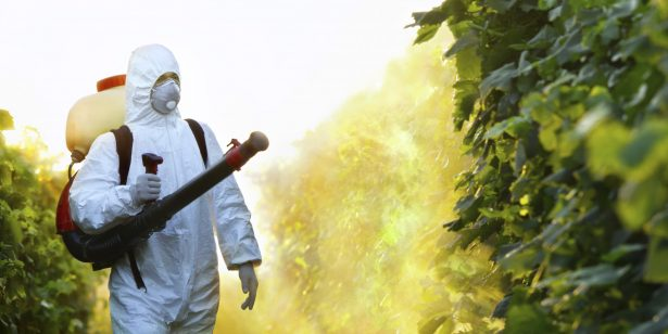1bd02 sahte pestisit kimyasallar ab ekonomisine zarar veriyor. e1487752004553