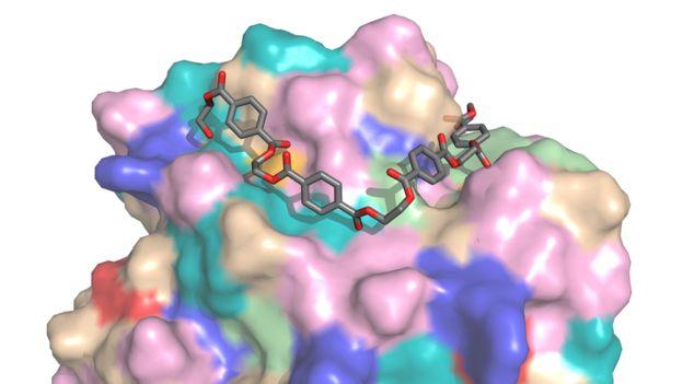 46a14 bilim c4b0nsanlarc4b1 plastic49fi c387c3b6zen enzim gelic59ftirdi