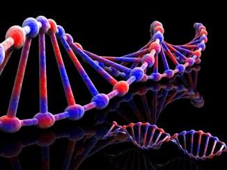 3b7ff gelecec49fin meslec49fi e2809cbiyoinformatik ve genetik uzmanlc4b1c49fc4b1e2809d