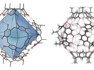 fb415 kimyagerler terpenleri sentezlemek c4b0c3a7in yeni bir yc3b6ntem gelic59ftirdiler e1534692174495