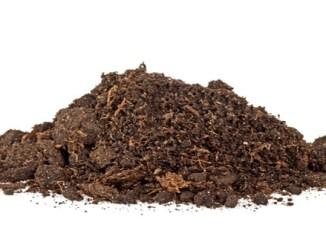 7b370 mikroplastiklerin toprak ve mikroplar c39czerindeki etkisi