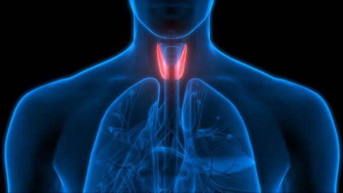 sinir monitorizasyon teknolojisi ile tiroid ameliyatlarinda ses telleri ve yuz sinirleri guvende