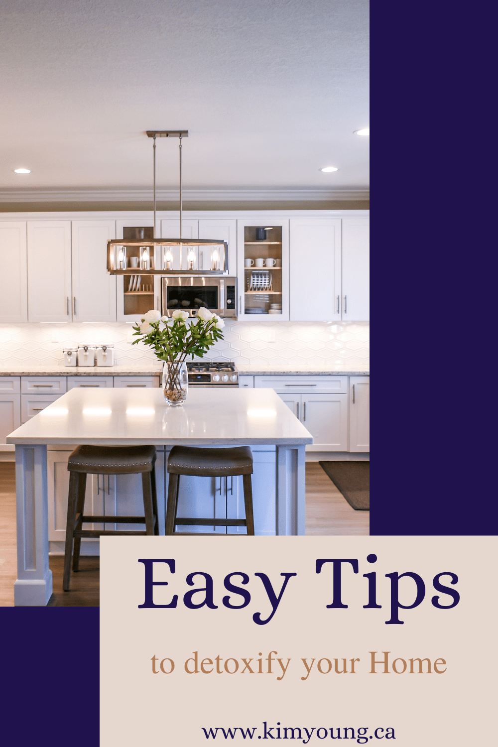 pinterest graphic for easy tips to detox your home blog