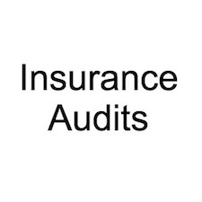 Insurance Audit 2