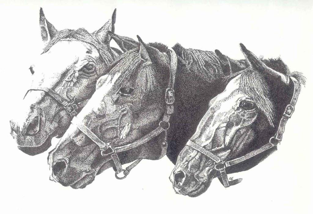 Horses Heads - Ink Pointillism