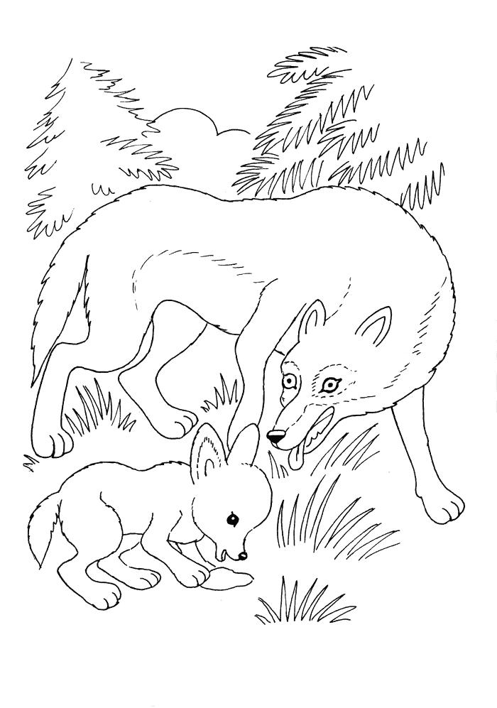 Ausmalbilder Fr Kinder Wolf Mit Jungem