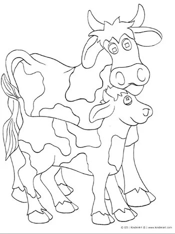Cow and Calf Coloring Page