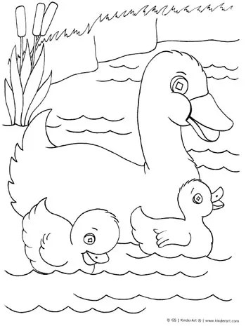 Duck with Ducklings Coloring Page