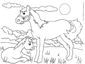 Free Coloring Book Pages to Print and Color. Printables