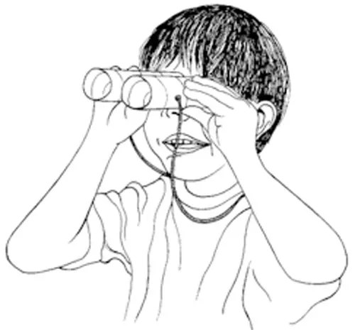 Toilet Paper Roll Bird Binoculars: Crafts for Kids from