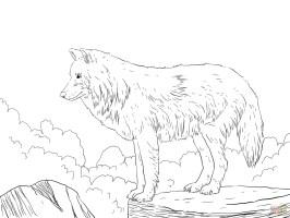 Wolf Ausmalbilder Zum Ausdrucken  Ausmalbilder Wolf 2 ...
