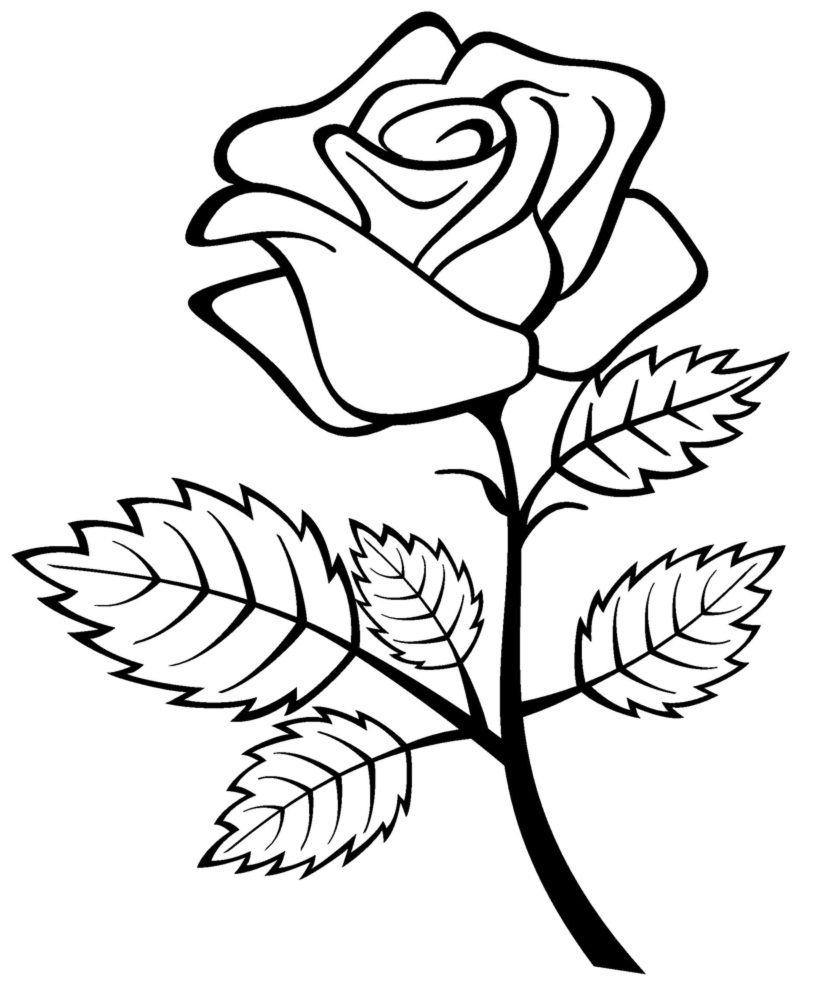 Kostenlose Druckbare Rosen Malvorlagen Für Kinder In 2020