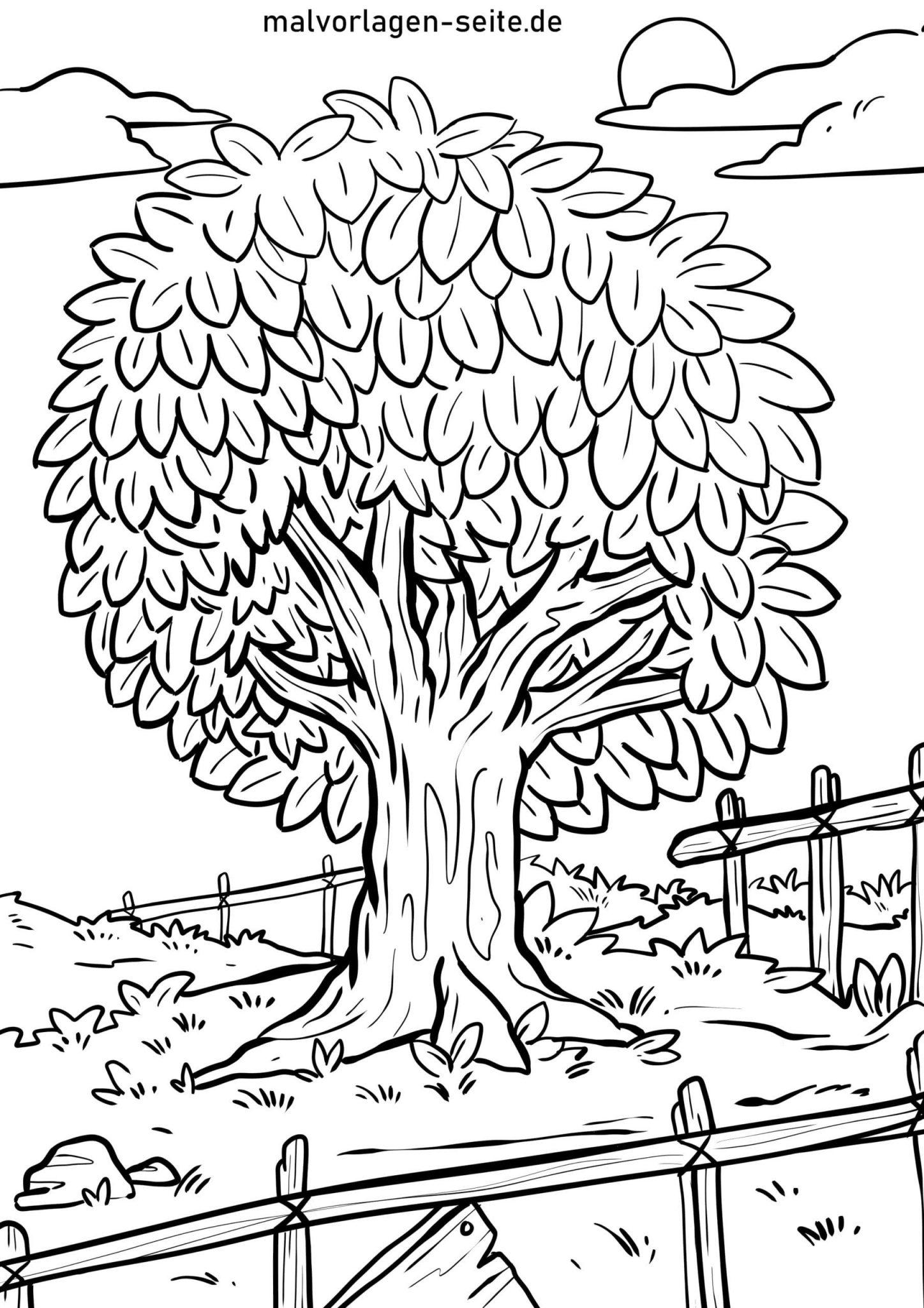 Malvorlage Baum - Ausmalbilder Kostenlos Herunterladen