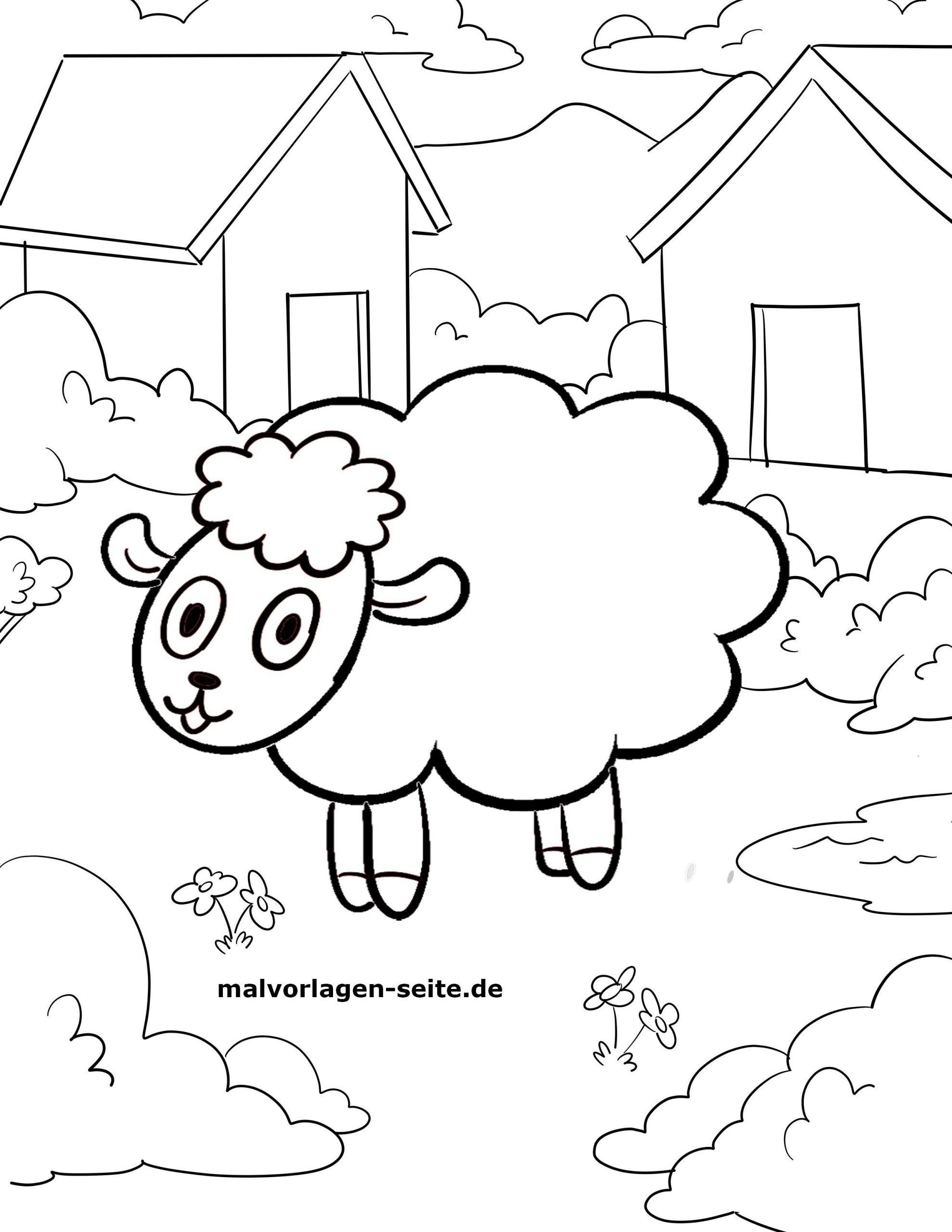 Malvorlage Schaf - kinderbilderdownload kinderbilder