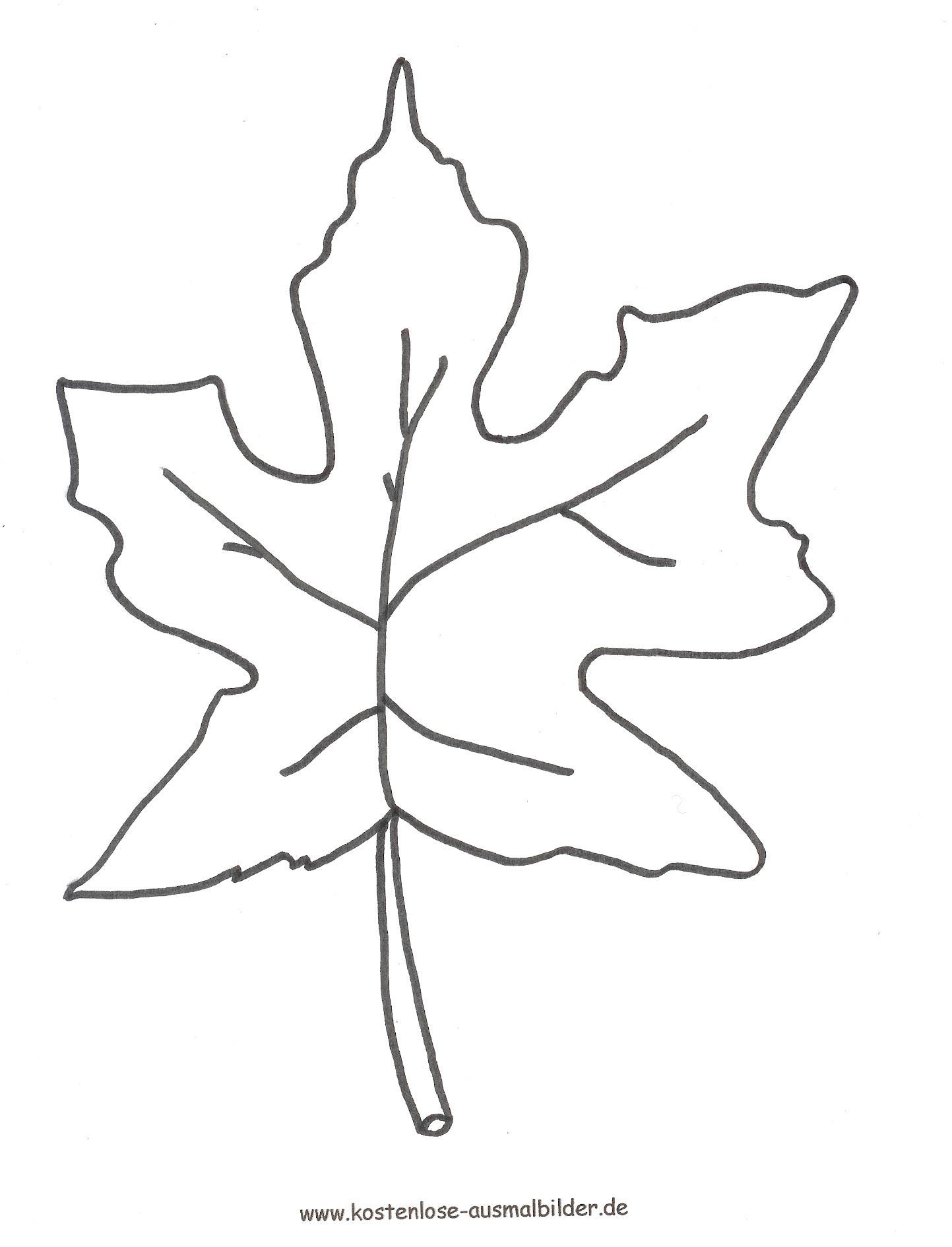 Blätter Zum Ausdrucken - kinderbilderdownload
