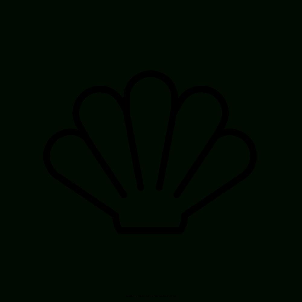 Muschel Malvorlage - kinderbilderdownload kinderbilder