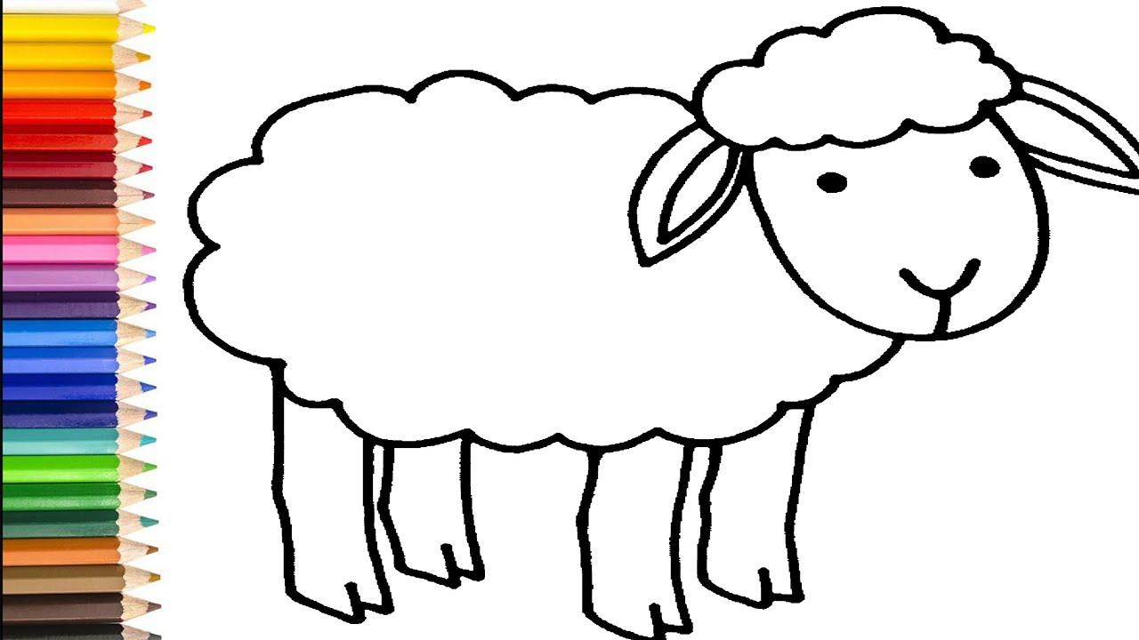 Schaf Malvorlage - kinderbilderdownload kinderbilder
