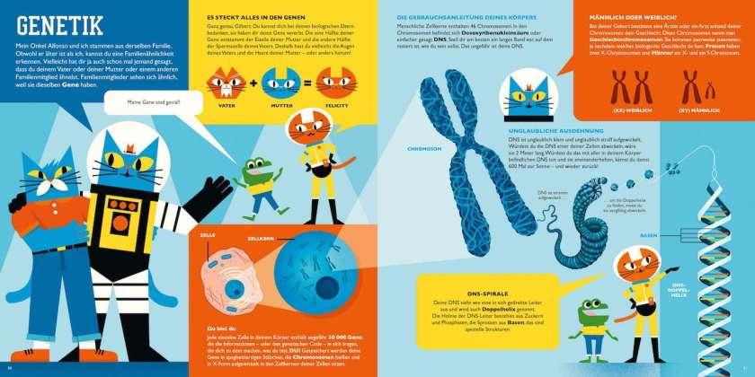 Professor Astrokatz Kinderbuch zum menschlichen Körper