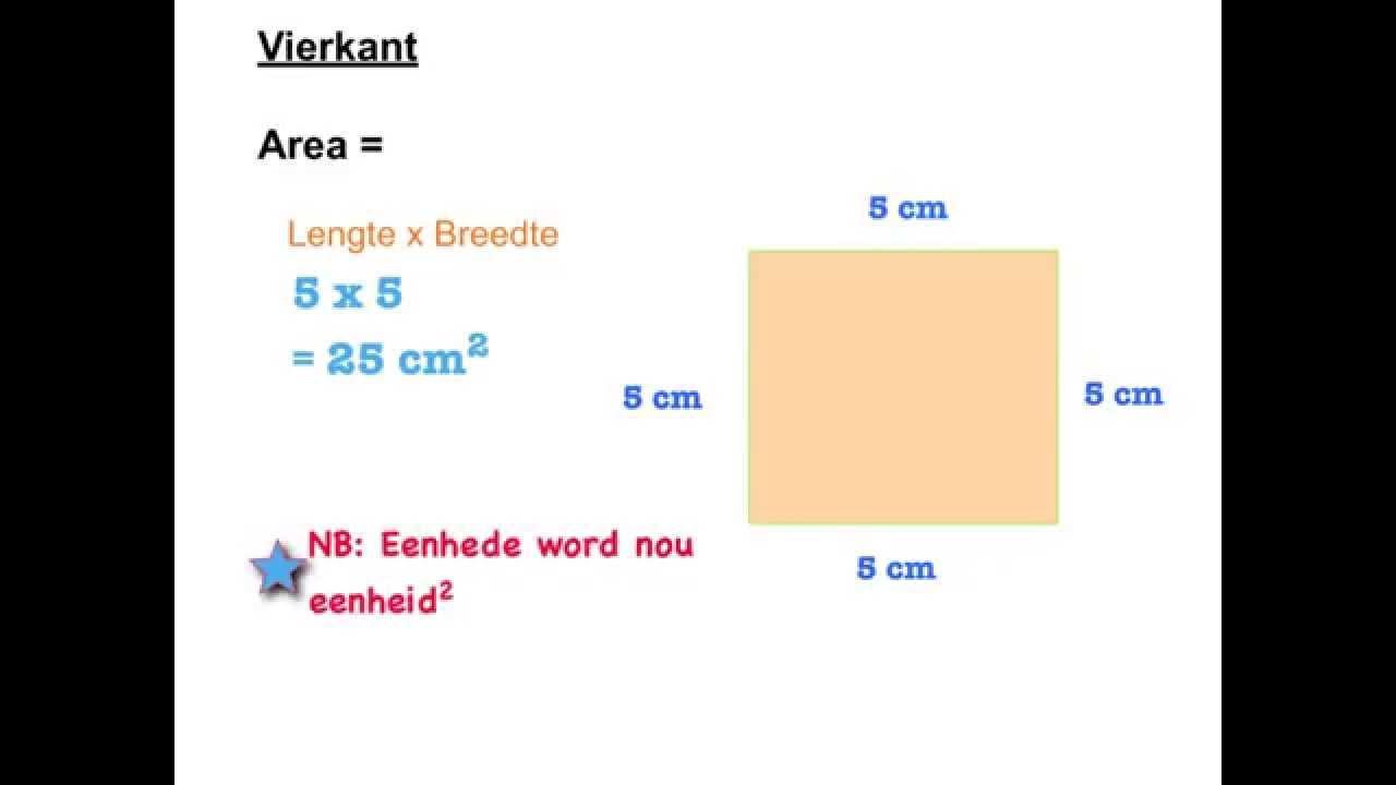 Wiskunde Werkbladen Volume 8