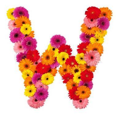 Letter W - flower alphabet isolated on white background