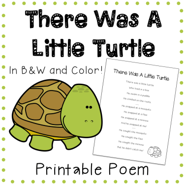 There-Was-A-Little-Turtle-1.001