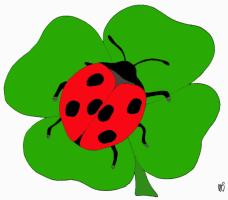 Marienkäfer auf einem Kleeblatt   Kindergaudi