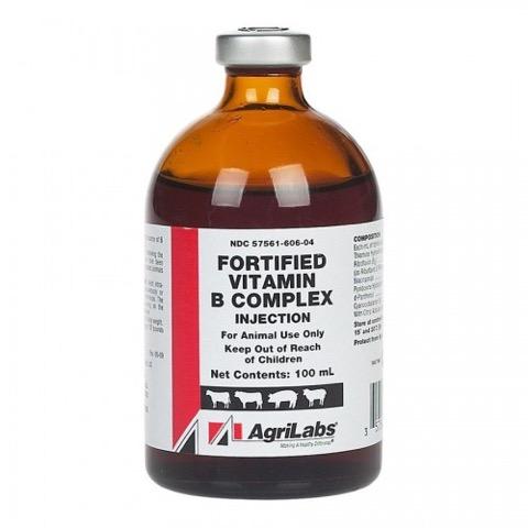 Fortified Vitamin B Complex