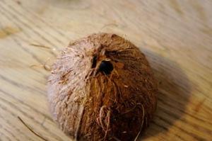 Nun ein  Loch in die Kokosnuss bohren.  Foto (c) Kinderoutdoor.de