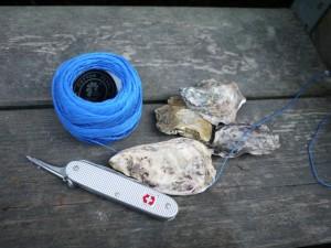 Hier ist das Material mit dem die Kinder ihre Muschelkette basteln. Foto (c) kinderoutdoor.de