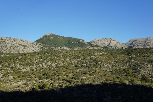 Wandern Mit Kindern Mallorca Kinderoutdoor Outdoor Erlebnisse Mit Der Ganzen Familie
