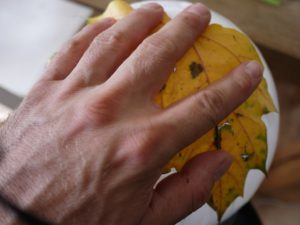 Basteln mit Herbstlaub: Die erste Lage bunter Blätter kommt auf den Ballon. foto (c) kinderoutdoor.de