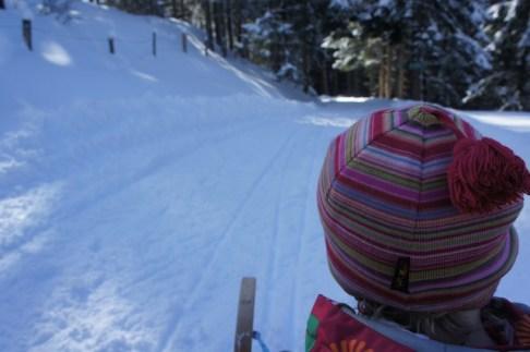 Wandern mit Kindern im Winter: Runter geht es deutlich schneller. Die Outdoorkids haben ihre Freude dabei, foto (c) kinderoutdoor.de
