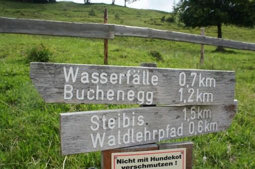 Die Tour zu den Buchenegger Wasserfällen schaffen auch größere Kindergartenkinder. foto (c) kinderoutdoor.de