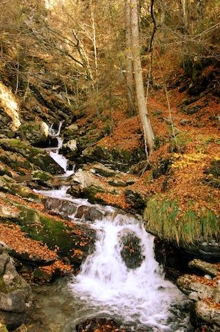 Wandert mit den Kindern im Herbst den Faltenbachtobel hinunter nach Oberstdorf. foto (c) kinderoutdoor.de