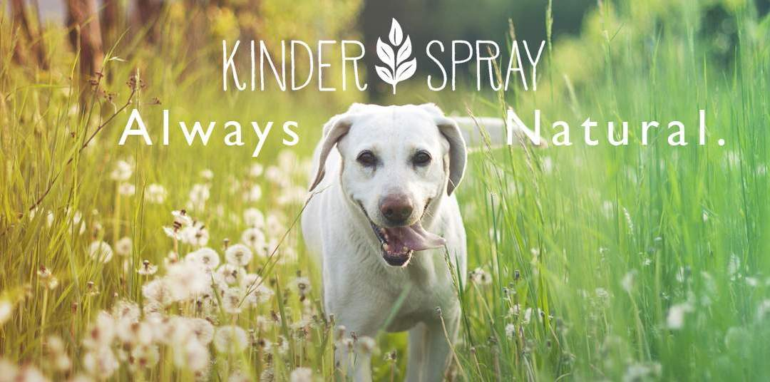 Kinder Spray – Your Natural Ally Among Top Rated Pest Control Companies