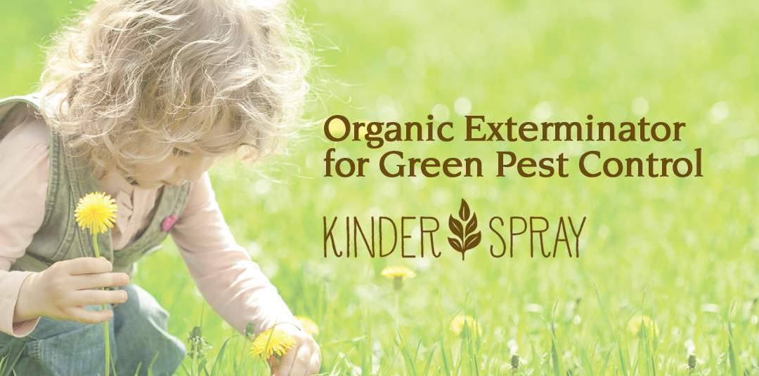 An Organic Exterminator for Green Pest Control