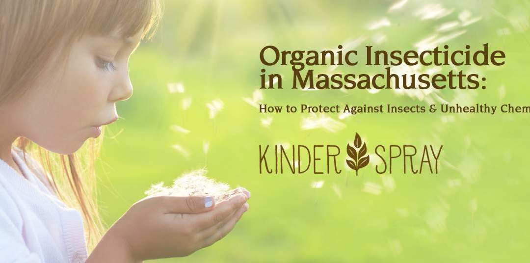 Organic Insecticide in Massachusetts: How to Protect Against Insects & Unhealthy Chemicals