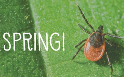 A Tick Control Service that Takes Control, Naturally
