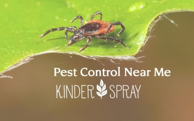 Narrow Your Search To 'Natural Pest Control Company Near Me'