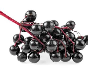 Best Recipe for Elderberry Syrup Using Fresh and Dried Elderberries