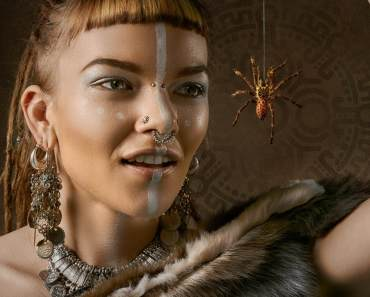 THE COMMON HOUSE SPIDER AND HOW TO TREAT SPIDER BITE