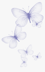 Transparent Butterfly Clipart Black And White Butterfly Background Transparent White Jpg HD Png Download kindpng