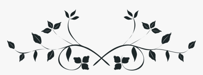 Black And White Leaves Png Transparent Background Wedding Flowers Clipart Png Download kindpng