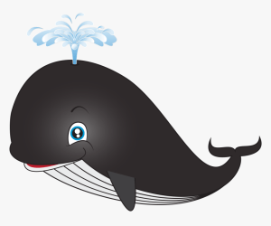 Baby Whale Png whale Cartoon Png Clip Whale Clipart Transparent Background Png Download kindpng