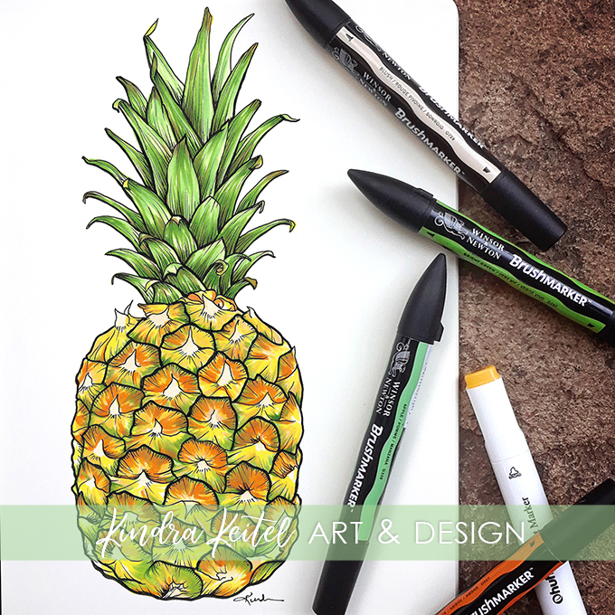 pineapple botanical illustration