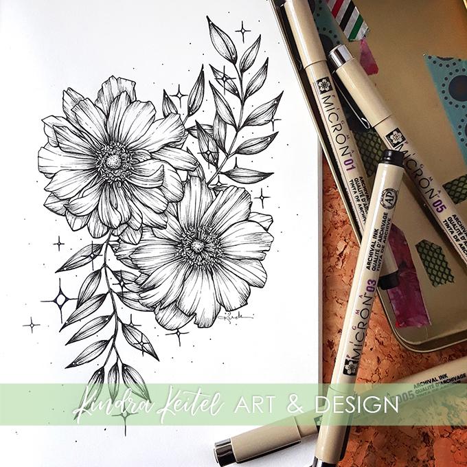 anemone botanical illustration