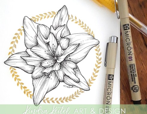 daylily lily botanical illustration