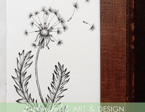 dandelion botanical illustration