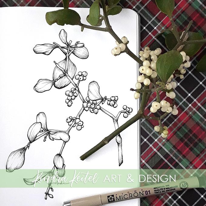 mistletoe botanical illustration