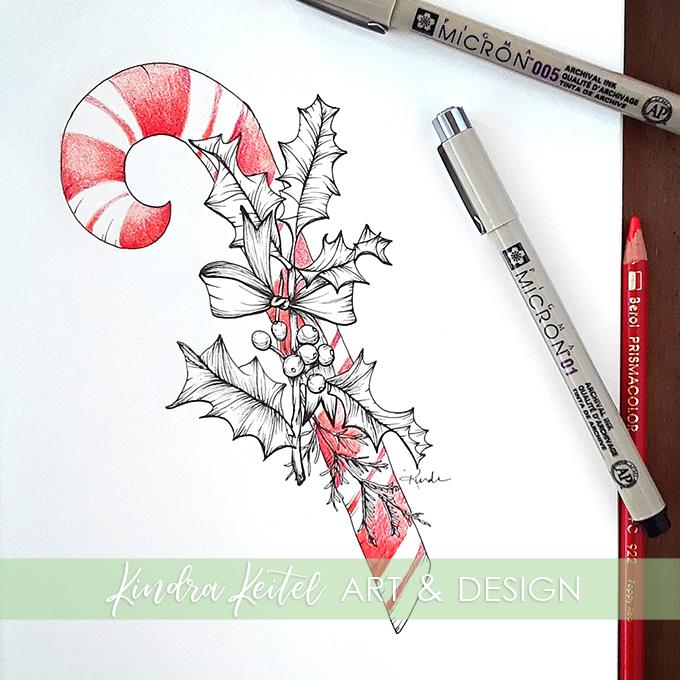 candy cane holly botanical illustration